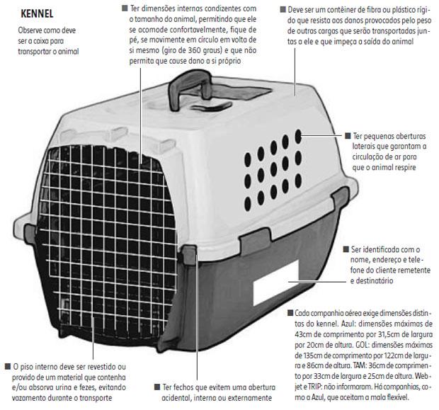 Como transportar seu animal de estimação